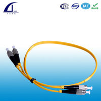 Ribbon Fibei Optical Patch Cords Pigtails