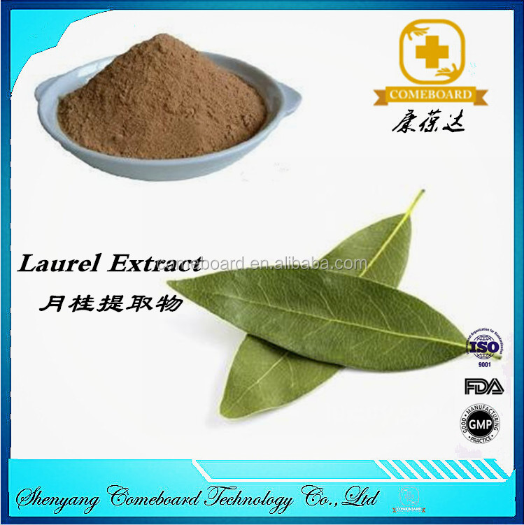 high purity Herbal natural laurel leaf extract
