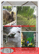 stainless steel zoo animal cages widely used in the big bird encloure