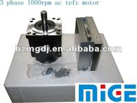 3 phase 1000 rpm ac tefe motor