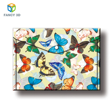 Zebulun Sale Japanese 3D PP PET Lenticular Plastic Clear Printing Envelope File Folder