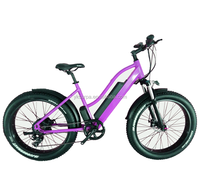 import electric bike from china/electric surrey bike/fat tire city e-bike made in china