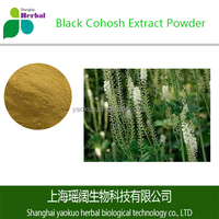 Natural Black Cohosh Extract Powder with High Quality