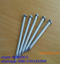 Wholesale low price standard galvanized hardened steel concrete nails/concrete anchor nails/concrete nails with washer 55#steel