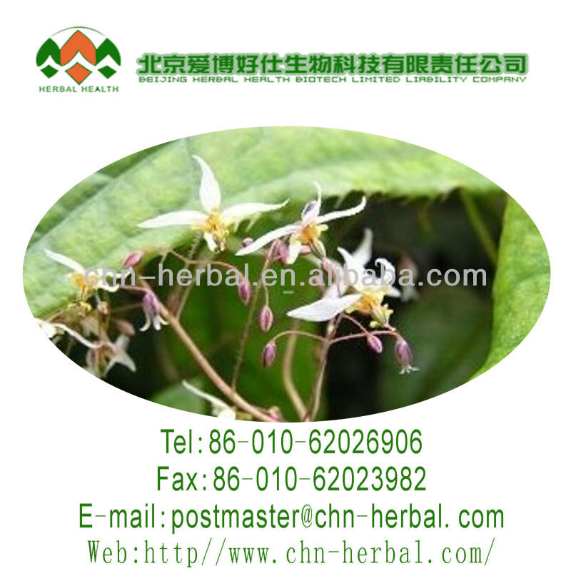 healthy plant extract powder boost male virility Icariin Epimedium extract