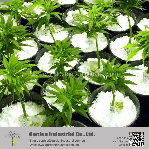 Indoor Garden Growing Media Perlite