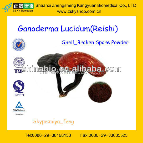 GMP Factory Supply Natural 100 Ganoderma Lucidum Extracts