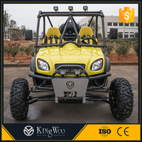Gasoline powered off road buggy street legal atv/utv