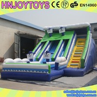 Banzai Inflatable Water Slides, Cheap Slide, Water Park Slides for Sale