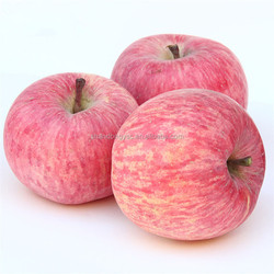 best price red delicious fuji apple exporter in China