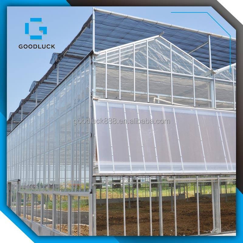 Good Quality Multi Span Agricultural Glass