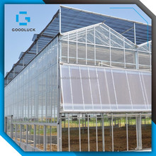 good quality multi-span Agricultural Glass Greenhouse