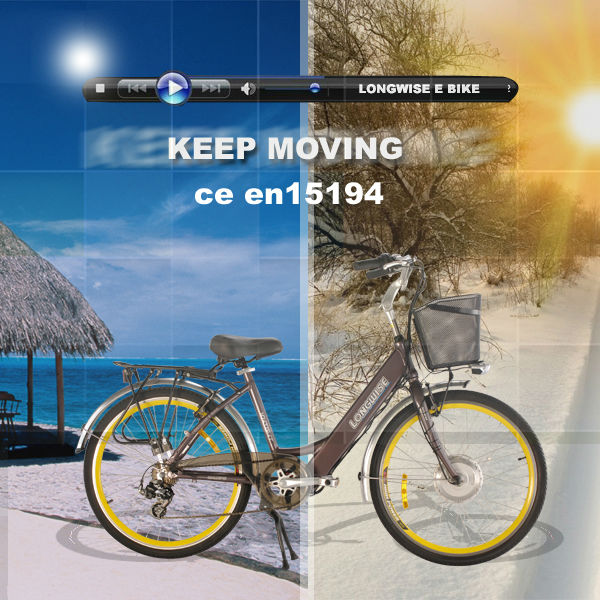 e bike Lithium Battery electric bicycle for sale.