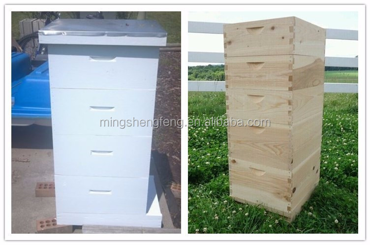 Bee Hive or Langstroth Wooden Beehive