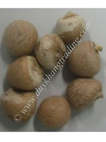WHOLE WHITE BETEL NUT