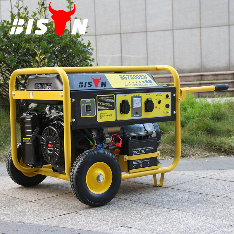 Bison China Zhejiang OEM High Quality 100%Copper OHV Technic AVR 6500W 6.6KVA Gasoline Key power JD Gasoline Generator