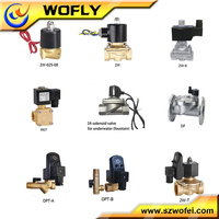 manufacture many kinds of 12v push pull solenoid coil 220v valve for water price