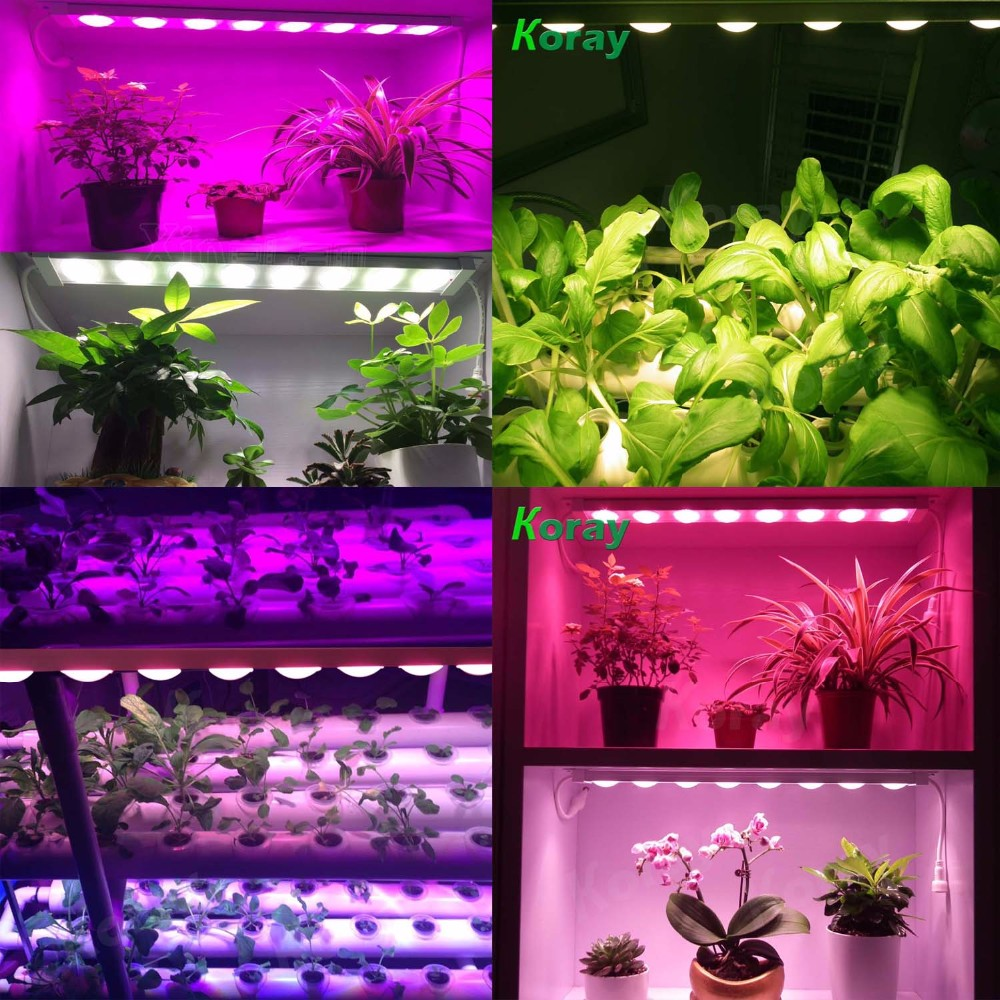 Indoor garden, Greenhouse, Horticulture, Farm and Flower planting LED plant grow light