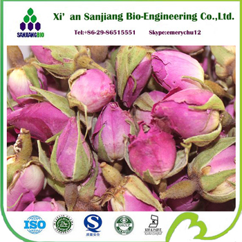 Bulk Rose Extract Rose Hip Extract Rose Petal Powder
