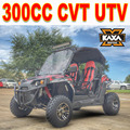 Professional China 300cc challenger UTV