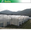 Multi span Large Industrial Greenhouse Kits