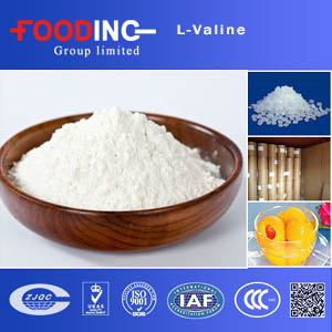 Factory supply l valine price / l-valine 99.9% pharmaceutical grade Supplier