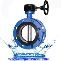 centric disc butterfly valves