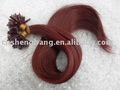 Human hair extensions red wine full end ,pre-bond hair extension