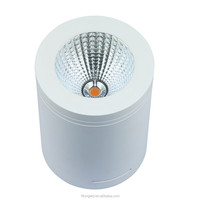Water Fire Rated 20W COB LED