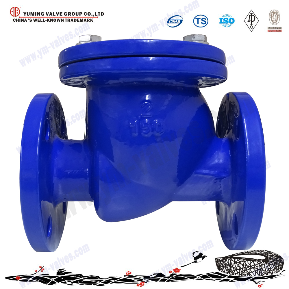 Stainless Steel/WCB/ductile iron Flange End swing check Valve price