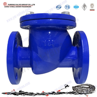 Stainless Steel WCB Ductile Iron Flange