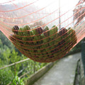 Olive Harvest Net with UV protection in pieces