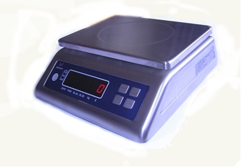 Waterproof Scale Ip68 Stainless Steel