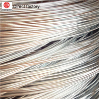 Building Material Galvanized Soft Wire Electro