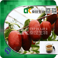 Factory Supply 100% Natural Chinese Date Extract Fruit Extract