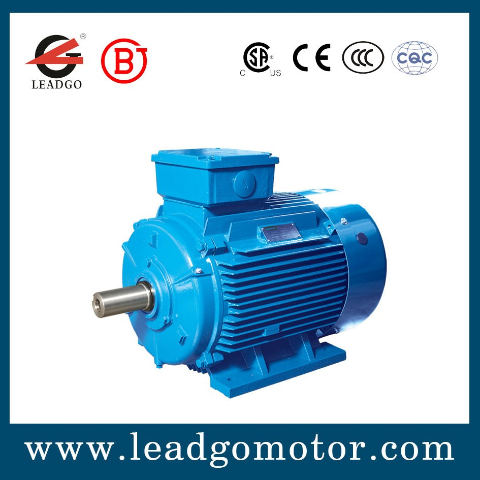 Small Size Variable Speed Electric Induction Motor