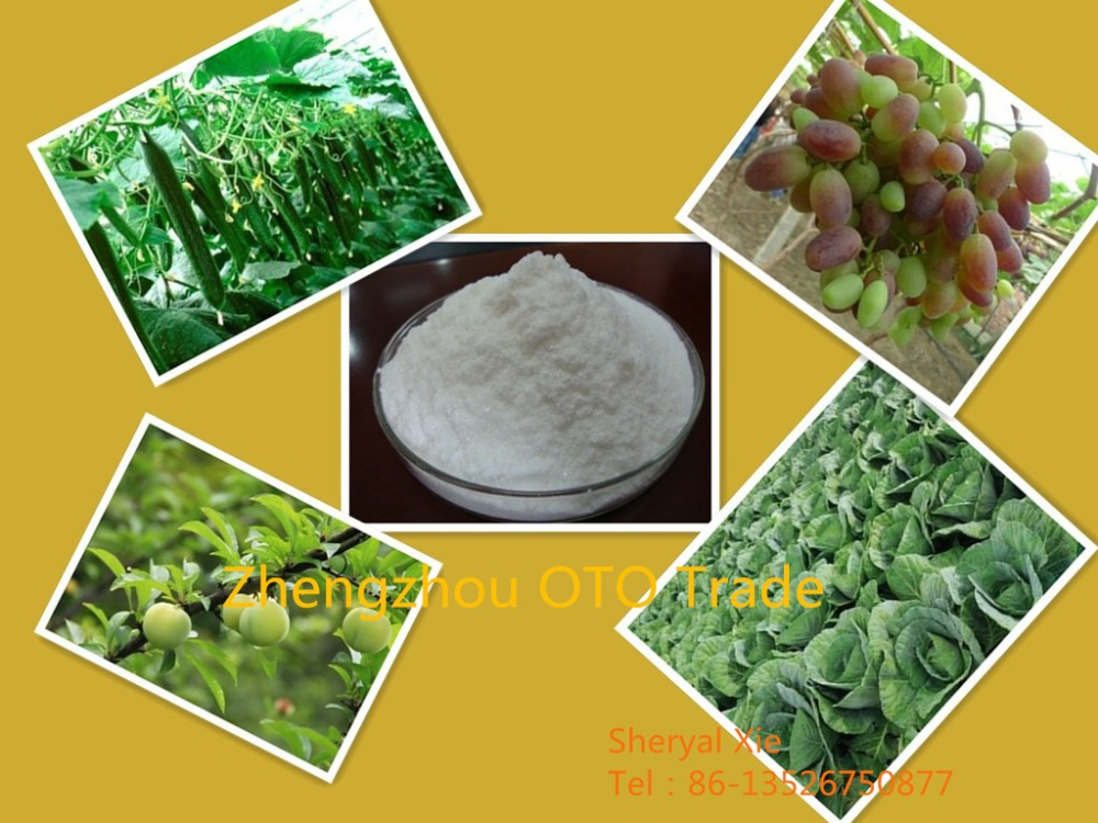 Plant growth regulator used for grapes, GA3, high purity 90% TC Gibberellic acid