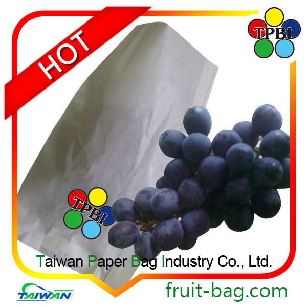 Taiwan grape fruit protection bag