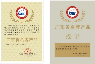 Products of Guangdong Top Brand(Sihu brand instrument Transformer)
