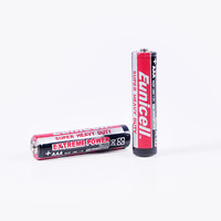 R03P AA Battery R03 size UM4 1.5 v battery