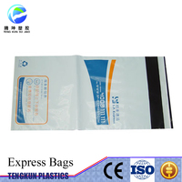 Custom Plastic Shipping Envelopes/Design Plastic Document Poly Mailing/Express Courier Bag Mail Bag
