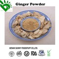 Ginger Extact Powder from Factory