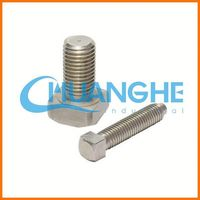 High Tensile aisi 304 stainless steel bolt