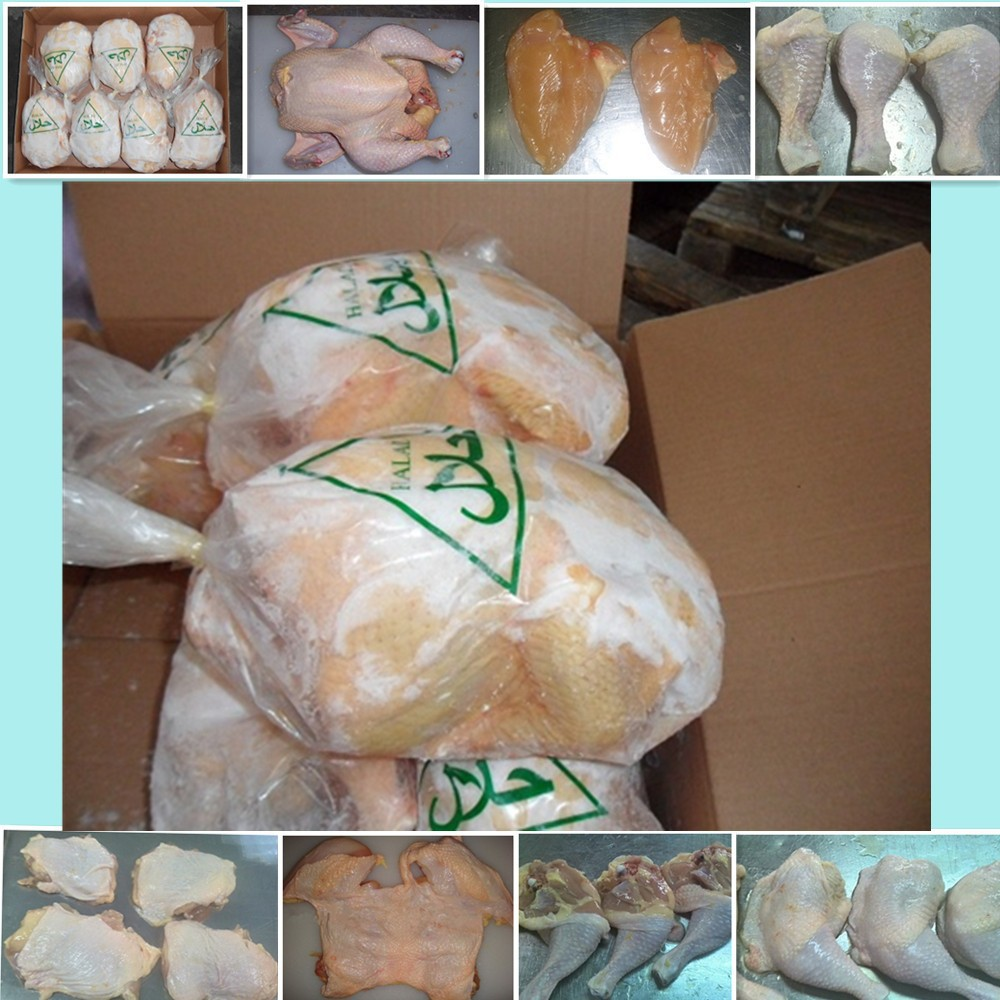 Best quality Frozen chicken meat