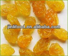 xinjiang good raisin best price dried fruit