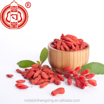 High quality organic and raw food goji berries dried