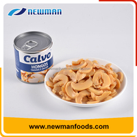 Hot sale salty brine slice mushroom delicious best canned mushrooms