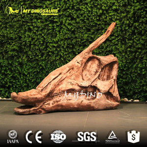 My Dino-DS081 Exhibition Dinsoaur Decoration Artificial Hadrosaur Skull
