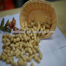 hot sale peanut Chinese biggest manufacturer