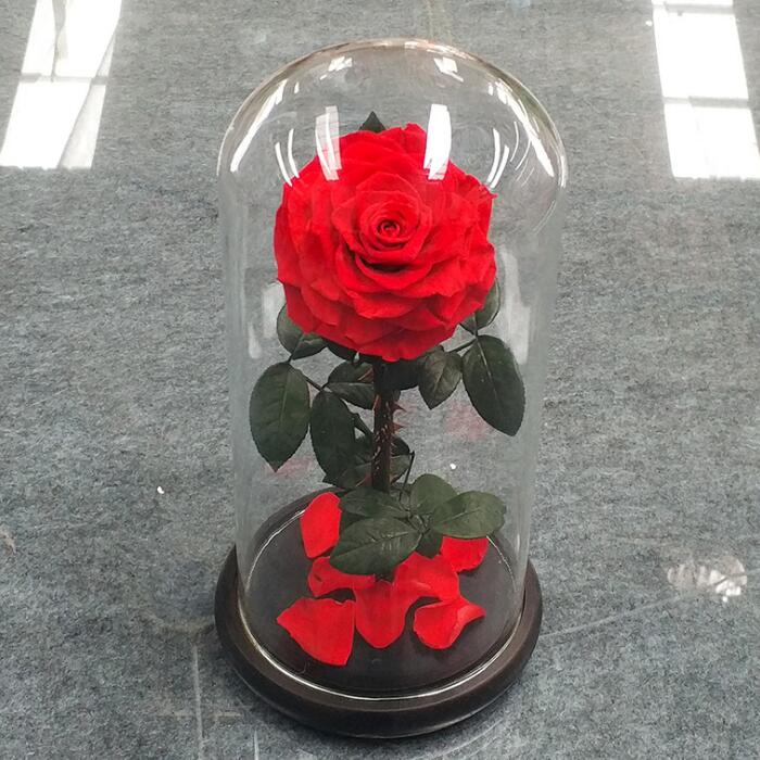 Best gift Decorative Flowers & Long lasting Preserved Rose for Christmas